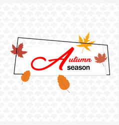 autumn season autumn leave square frame maple back vector image