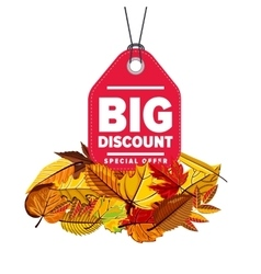 Big discount label Special offer vector