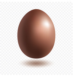 chocolate egg with shadow vector image