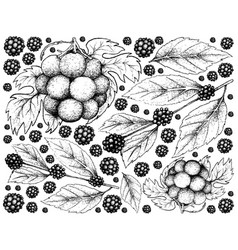 Hand drawn background of american beautyberry and vector