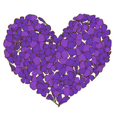 Heart of violet phlox flowers isolated on white vector