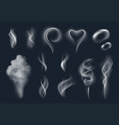 steam realistic tobacco smoke steaming cloud from vector image