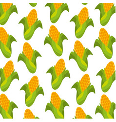 sweet corn cartoon thanksgiving day seamless vector image