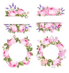 vintage rose flowers set over white background vector image
