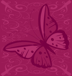 butterfly with spots vector image vector image