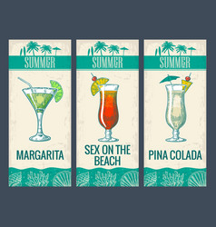alcohol cocktail set margarita sex on beach vector image
