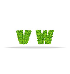 alfavit from the leaves of the clover letters vw vector image vector image