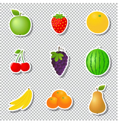 fruit stickers isolated on transparent background vector image