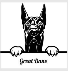 Great dane - peeking dogs - - breed face head vector