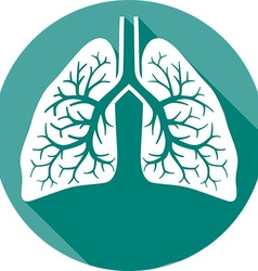 Human Lungs Icon vector