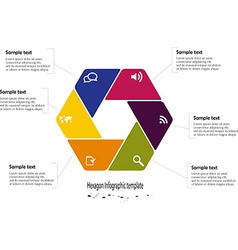Infographic with hexagon vector