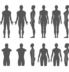 Man woman mannequin outlined silhouette torso vector