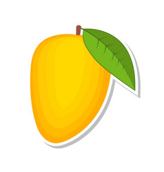 mango sweet fruit isolated fruit on white vector image