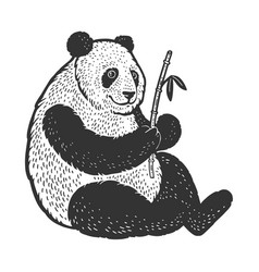 panda bear sketch vector image