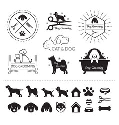 Pets cats and dogs logo vector