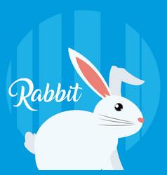 Rabbit cute animal cartoon vector