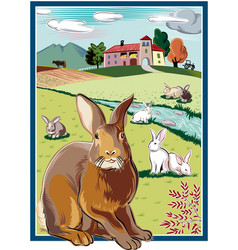 Rectangular frame with rabbits vector