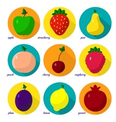 set of fruits berries vector image