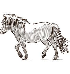 Sketch a walking pony vector
