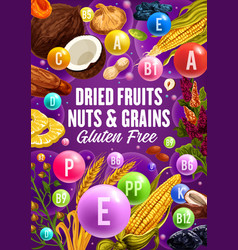 Vitamins in healthy dried fruits cereals and nuts vector