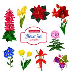 Flower garden flowering plant isolated icon set vector
