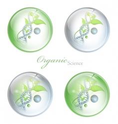 organic science balls vector image