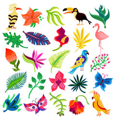 troipcal flora and fauna vector image vector image