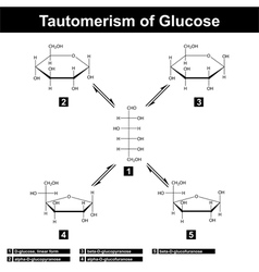 Tautomerism of glucose vector