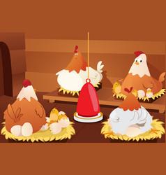 chicken hatching eggs vector image