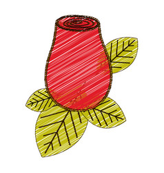 color pencil drawing of red rosebud with leaves vector image
