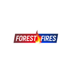 forest fires news headline vector image