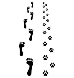 prints paws vector image