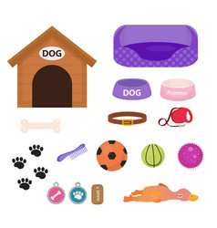 dogs stuff icon set with accessories for pets vector image vector image