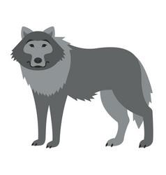 cute smiling wild wolf cartoon vector image