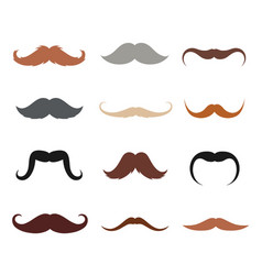 male mustache set vector image