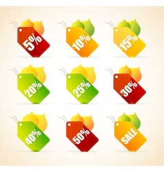 Autumnal discount leaves vector image
