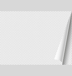 bending paper mockup object isolated on vector image