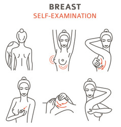 breast cancer medical infographic self vector image