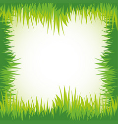 green grass for frame template vector image