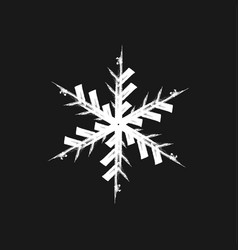 paint brush snowflake vector image