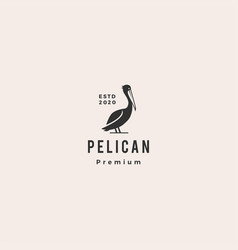 pelican gulf bird coast beach logo icon hipster vector image