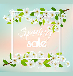 sale spring background with cherry blossoms vector image