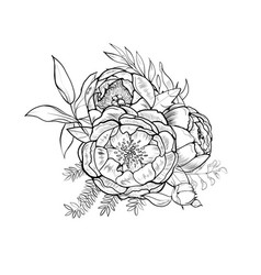 bouquet of peony element of design vector image vector image