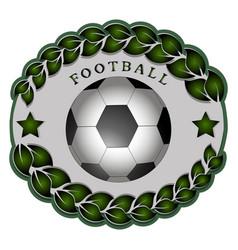 the theme football vector image