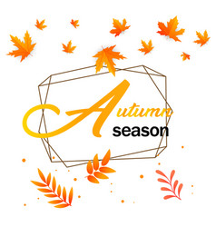 autumn season maple autumn leaves geometry backgro vector image