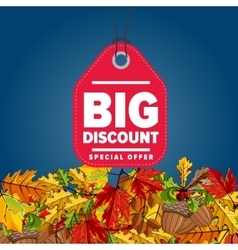 Big discount label Special offer vector image