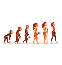 Human evolution from monkey to modern sexy woman vector