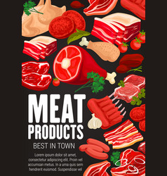 meat beef and pork sausages spices and herbs vector image
