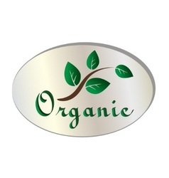 natural organic leaf icon vector image