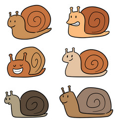 set of snail vector image